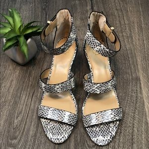 Leather Snakeskin Print Ankle Strap Sandal